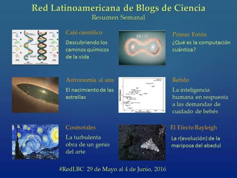 RedLBC 29May28 4Jun