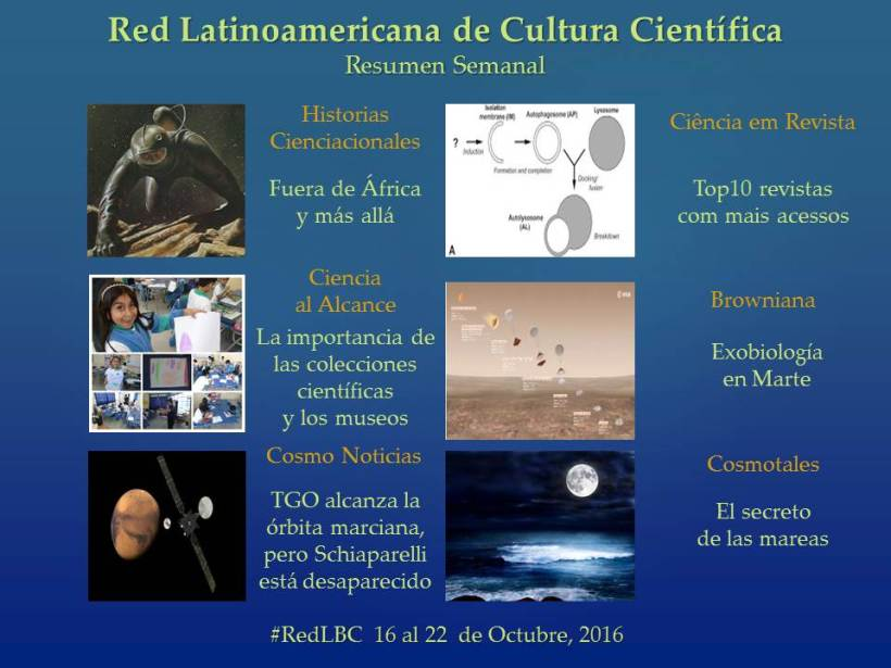 RedLBC 16 al 22 Oct.jpg
