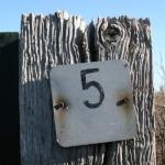 five_5.jpg